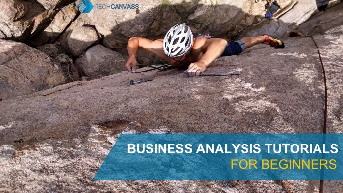 Business analysis tutorials for beginners TN
