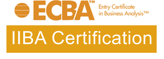 Business analyst certification for beginners