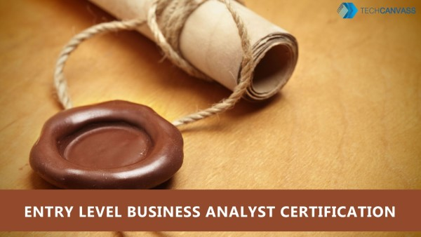 Entry Level Business Analyst Certification ECBA