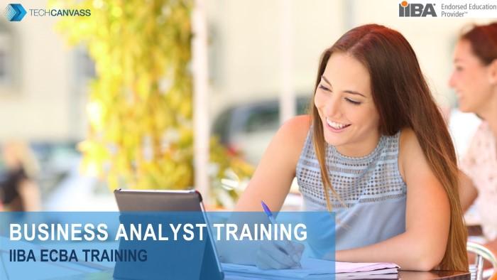 ECBA Business Analyst Certification Training TN