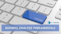 Business Analysis fundamentals tutorial TN