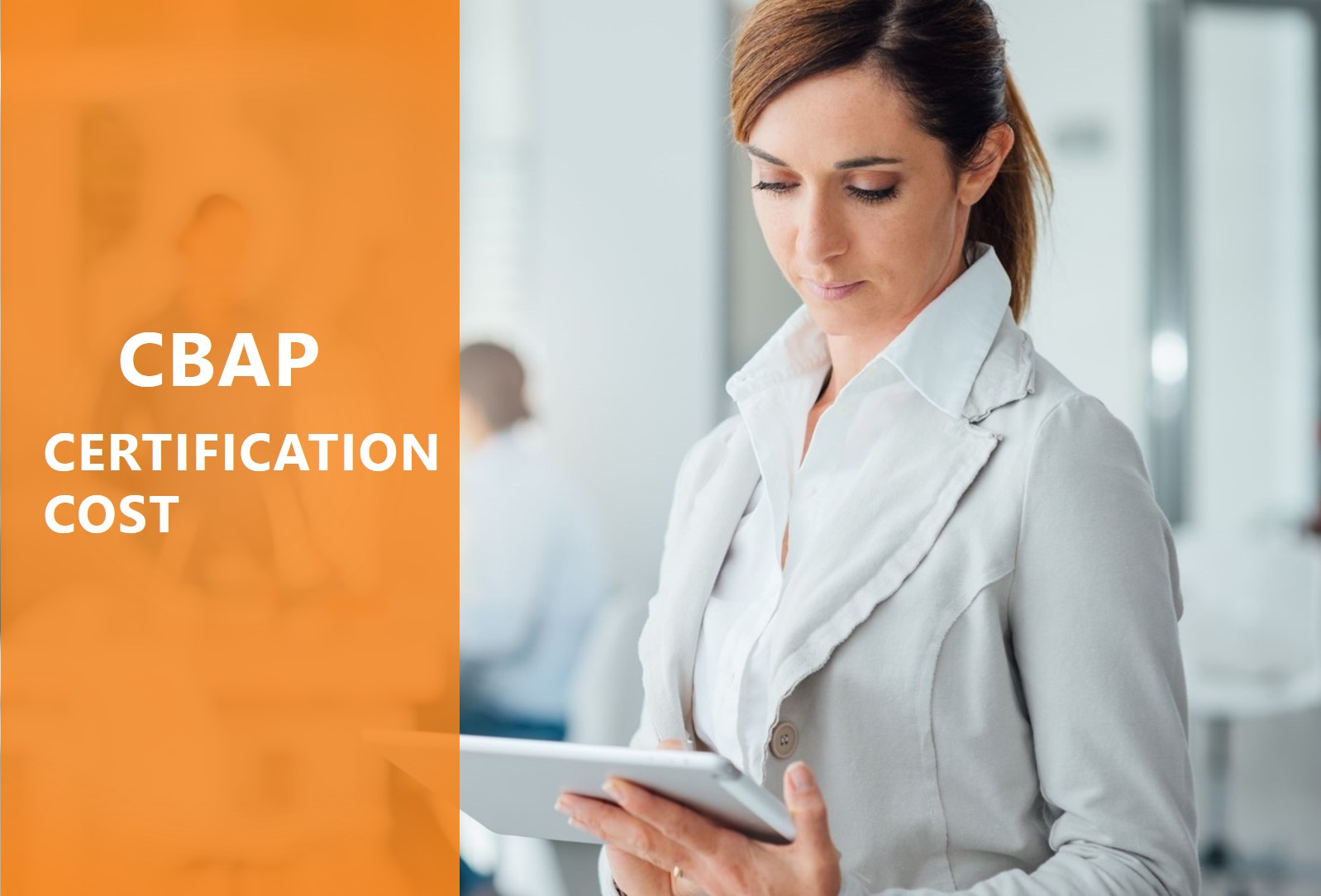 CBAP Certification Cost