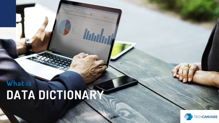 What is Data Dictionary?