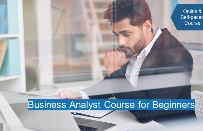 Business Analyst Course for Beginners