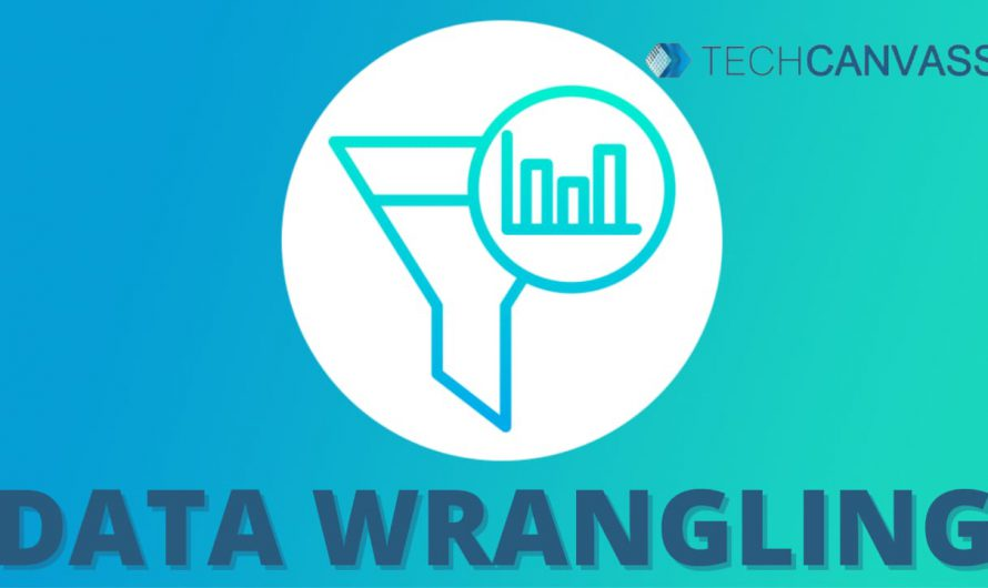WHAT IS DATA WRANGLING?