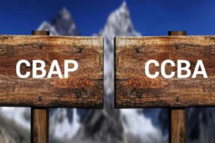 CCBA vs CBAP –  Which Is Better To Study For?